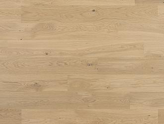 Ivory Oak (Dub)