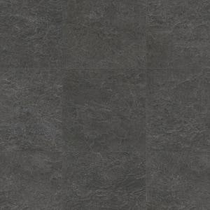 Bridlica čierna