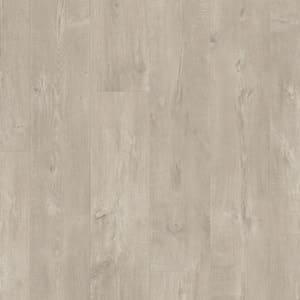 Dub Dominicano šedý