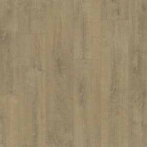 Zamatový dub pieskový